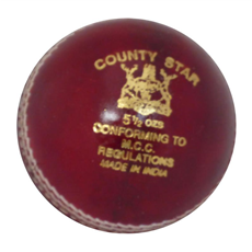 GM Cricket Ball County Star