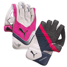 Puma Wicket Keeping Gloves Evo Speed 1
