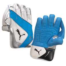 Puma Wicket Keeping Gloves Evo Power 3