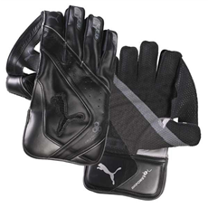 Puma Wicket Keeping Gloves Evo Power 1 SE