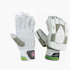 2020 Hunts County Cricket Batting Gloves Tekton