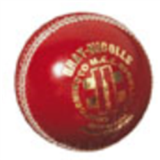 Gray Nicolls Cricket Ball Test Special