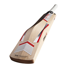 GM Cricket Bat Zona F2 808