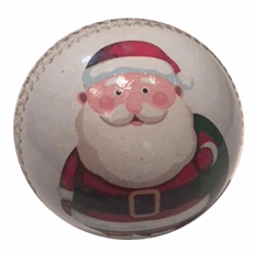 Gift Cricket Ball for Christmas