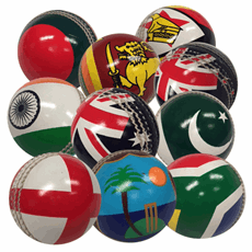 Hunts County International Flag Cricket Ball