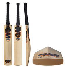 Gunn and Moore Cricket Bat Eclipse 404