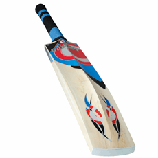 Hunts County Cricket Bat Envy 350 Junior